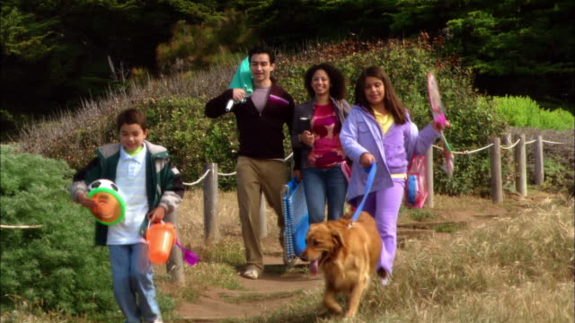 ms, family with two children (8-9, 10-11) and dog walking on field, carrying picnic equipment, leffingwell park, cambria, california, usa - dog walking stock videos & royalty-free footage