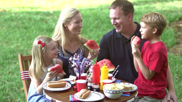 vídeos y material grabado en eventos de stock de familia con dos niños en el 4 de julio picnic - 30 39 years