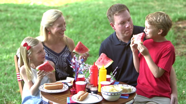 family with two children at july 4th picnic - 8 9 years stock videos & royalty-free footage