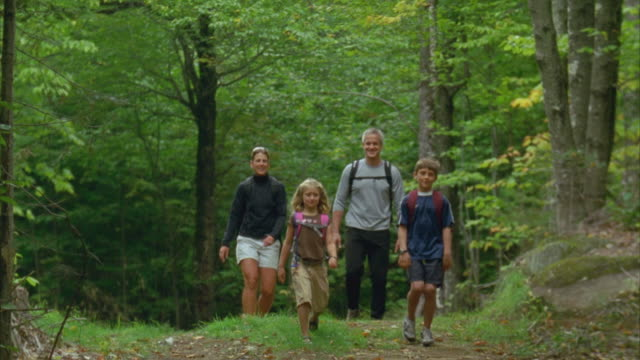 ms, family with two children (6-9) trekking in forest, carrabassett valley, maine, usa - maine stock videos & royalty-free footage