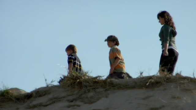 ms, la, ts, family with two sons (8-9, 10-11) and dog walking on sand dune, provincetown, cape cod, massachusetts, usa - following stock videos & royalty-free footage