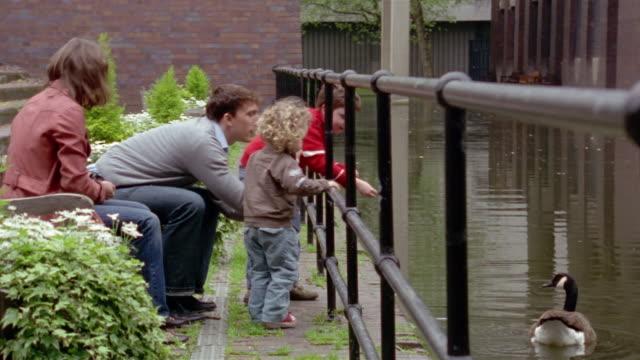 vídeos de stock, filmes e b-roll de family with two young boys feeding canada goose in pond / london, england - organismo aquático