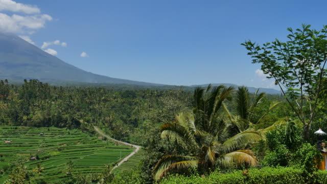 Famous rice terrace near tirtagangga in Bali Indonesia
