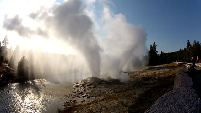 fan und stößel geysire - yellowstone nationalpark stock-videos und b-roll-filmmaterial