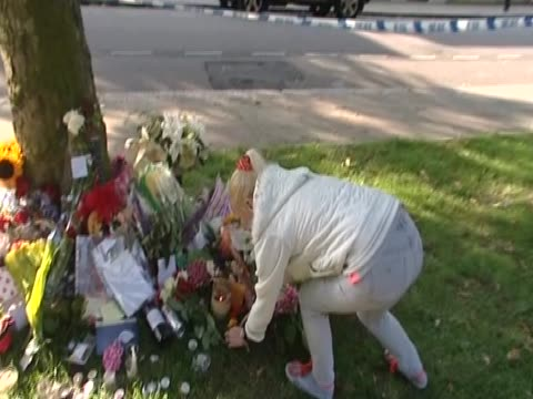 a fan lays flowers as a tribute for amy winehouse near her home in north london - temporäre gedenkstätte stock-videos und b-roll-filmmaterial