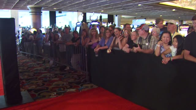 fans at the 37th annual daytime emmy awards at las vegas nv - annual daytime emmy awards stock videos & royalty-free footage