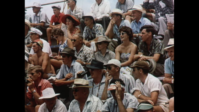MONTAGE Fans gather for motor racing at the Grand Prix in Ardmore / New Zealand