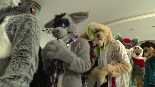 fans of dressing up as furry animals connected with their wild side on thursday taking part in a costume parade in berlin - animal costume stock videos & royalty-free footage