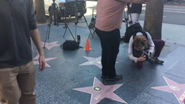 vídeos y material grabado en eventos de stock de fans of mary tyler moore pay their respects to the actress as flowers are laid in honor at her star on the hollywood walk of fame - mary tyler moore