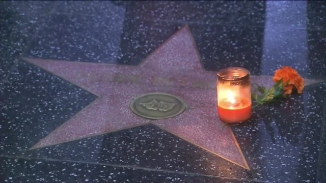 fans placed flowers on debbie reynolds' star on the hollywood walk of fame after the star passed away. - debbie reynolds stock-videos und b-roll-filmmaterial