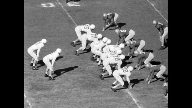 61000 fans watch the orange bowl between texas longhorns coached by blair cherry and the georgia bulldogs coached by wallace butts / pan of enormous... - 1949 stock videos & royalty-free footage