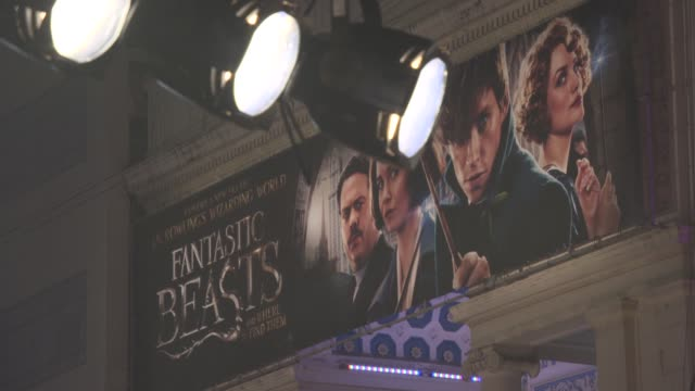fantastic beasts and where to find them' european premiere at odeon leicester square on november 13, 2016 in london, england. - leicester square stock videos & royalty-free footage