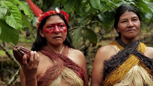 Far from the Paris conference rooms where politicians struck a historic deal on climate change some indigenous tribes of the Amazon are taking action...