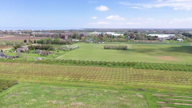 farm and orchard in spring at niagara falls area, ontario, canada - ontario canada stock videos & royalty-free footage