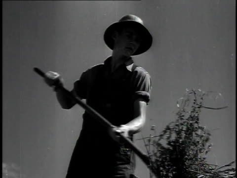 1923 ms farm boy shoveling hay with pitchfork / united states - 1923 stock videos & royalty-free footage