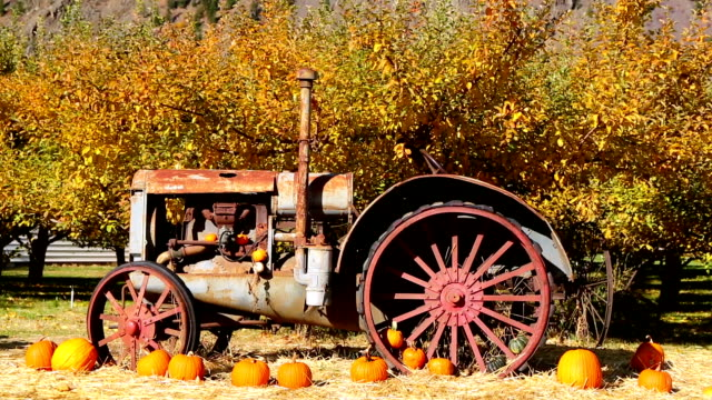 farm equipment keremeos orchard british columbia - crop stock videos & royalty-free footage