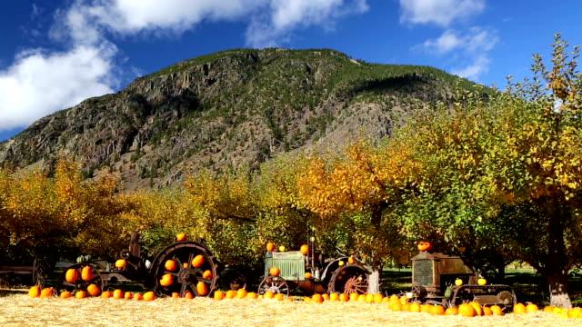 Farm Equipment Keremeos Orchard Britisch-Kolumbien