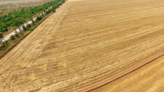 aerial: farm fields after harvesting in autumn - plowed field stock videos & royalty-free footage