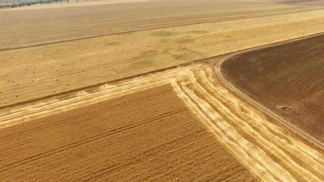 秋の収穫後の空中: 農業分野 - 梱包機点の映像素材/bロール