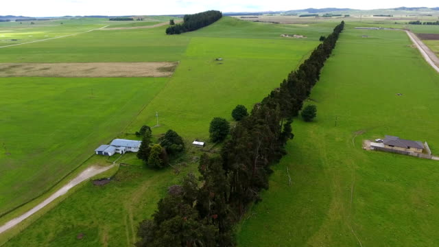farm, fields, crops, landscape, panorama - oceania stock videos and b-roll footage