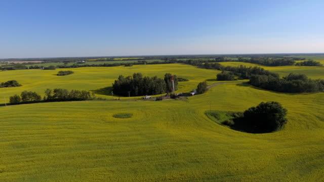 farm fields - edmonton stock videos and b-roll footage