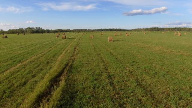 farm fields - hay isolated stock videos & royalty-free footage
