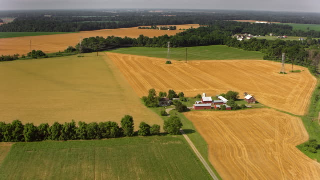 aerial a farm in the sunny countryside - farm stock videos & royalty-free footage