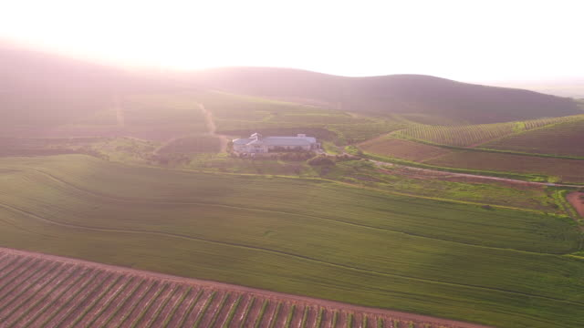 AERIAL farm land/ Philadelphia/ South Africa