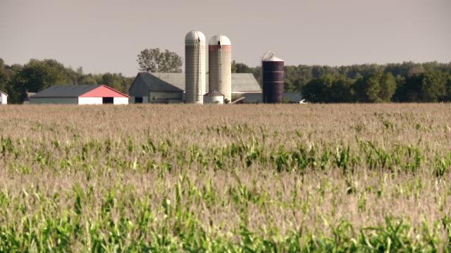 A farm on a vast field with silos