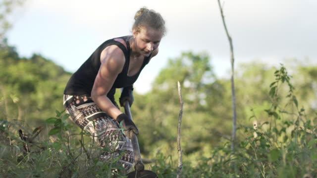 farm volunteer using a hoe in a field in brazil - farm worker stock videos & royalty-free footage