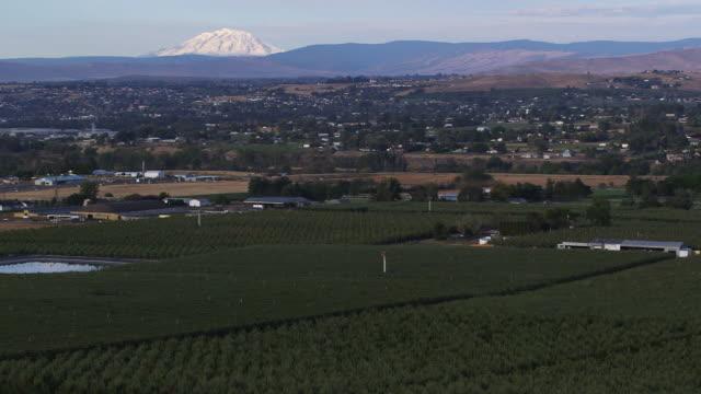 farm wide pan l - wiese stock videos & royalty-free footage