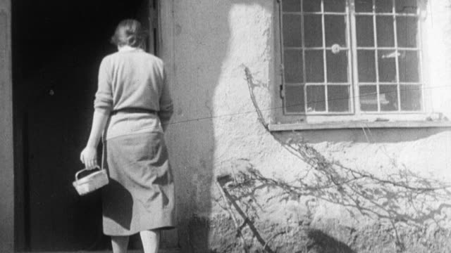 1933 montage farm wife carrying basket of eggs from barn and farmers opening hen house doors, with the hens spilling out / united kingdom - basket stock videos and b-roll footage