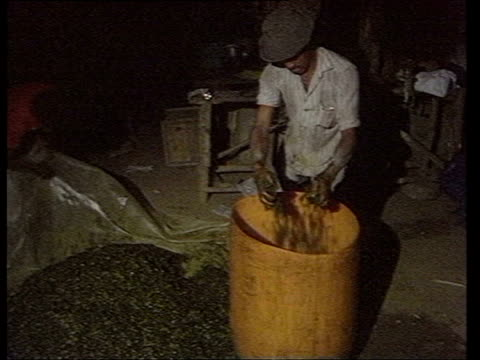 farm worker eating chicken/ ms men putting coca leaves into plastic drum/ cu leaves/ ms pan pouring gasoline into drum with leaves to make cocaine/... - 麻薬点の映像素材/bロール