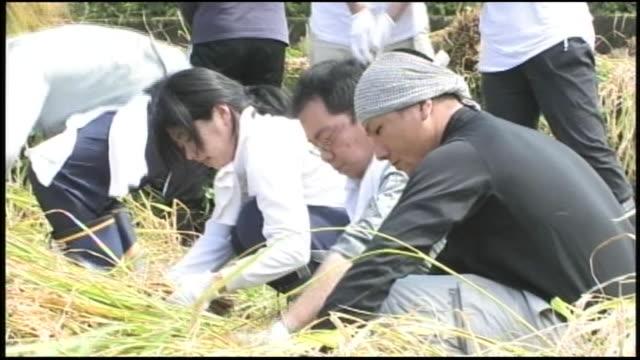 Farm workers harvest rice on a farm near Ota, Japan.