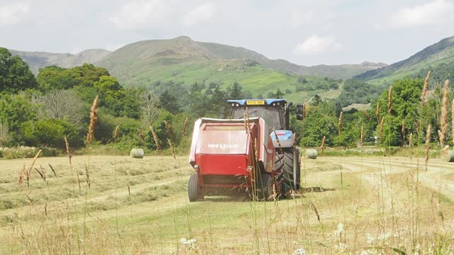 farmer baling hay in a traditional hay meadow in ambleside, lake district, on july 19, 2021 in ambleside, uk. - uncultivated stock videos & royalty-free footage
