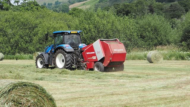 a farmer baling hay in a traditional hay meadow in ambleside, lake district, uk. - uncultivated stock videos & royalty-free footage