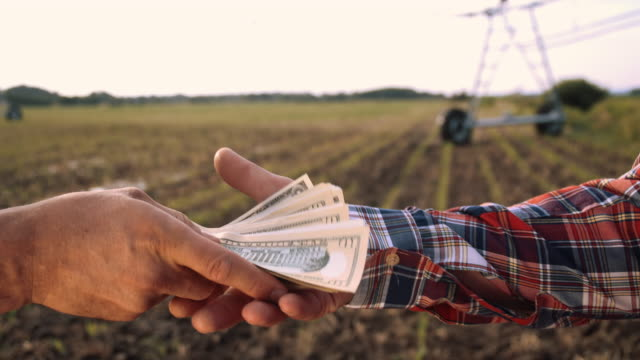 vídeos de stock, filmes e b-roll de cu agricultor comprar equipamentos novos - vendor