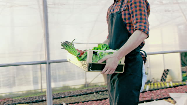 SLO MO Farmer carrying a crate full of vegetables
