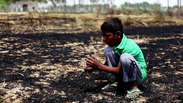 landwirt überprüfung ernte nach dem brennen - verlust stock-videos und b-roll-filmmaterial