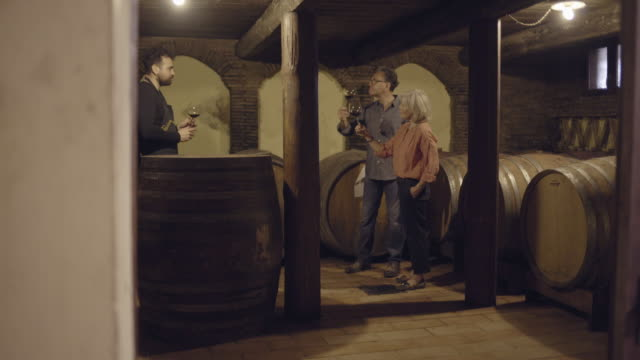 farmer checking on wine - tourism stock videos & royalty-free footage