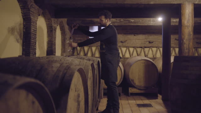 farmer checking on wine - wine cellar stock videos and b-roll footage