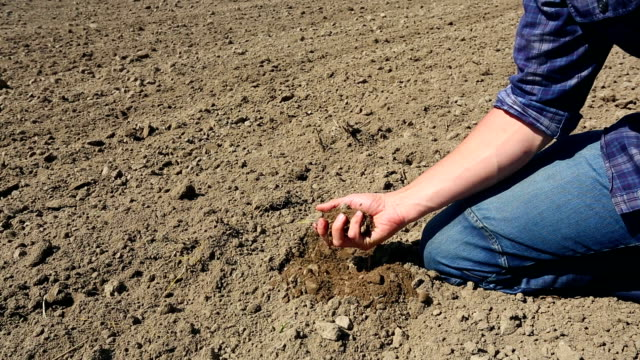 farmer checking soil through his fingers - 2 shots - meteorology stock videos & royalty-free footage