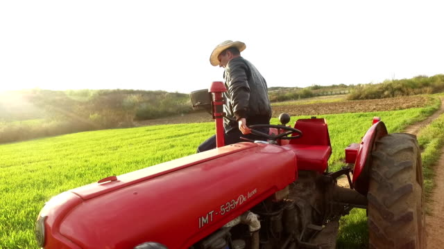 Agricoltore Ckecking sua terra
