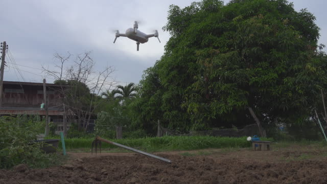 farmer control the drone for inspect tree - thai ethnicity stock videos & royalty-free footage