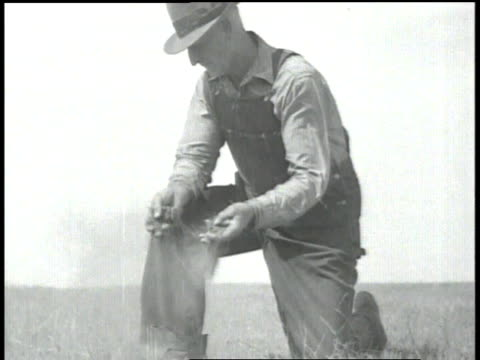 stockvideo's en b-roll-footage met farmer crumbling topsoil in his hands / topsoil falls through his fingers - agrarisch beroep