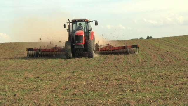 ws slo mo farmer cultivating organic soybean field / columbus, wisconsin, usa - tractor stock videos & royalty-free footage
