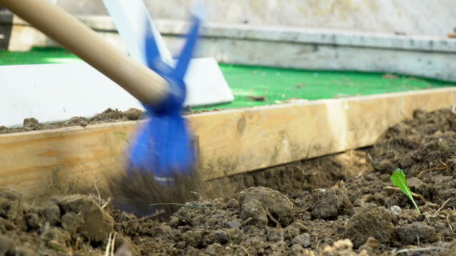 a farmer digging the field to planting in garden - spade stock videos & royalty-free footage