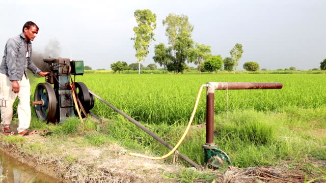 farmer doing irrigation through tube well - water pump stock videos & royalty-free footage