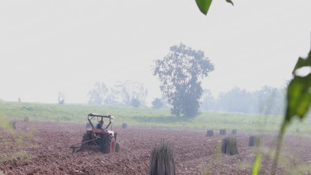 farmer driver Tractor plowing cassava field