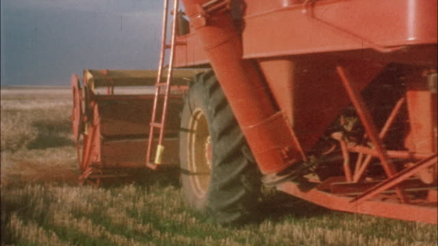 vidéos et rushes de a farmer drives a combine harvester while a teenage boy rides; two combine harvesters harvest golden wheat in a field. - récolter
